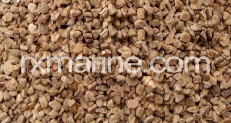 walnut supplier in Middle East Dubai
